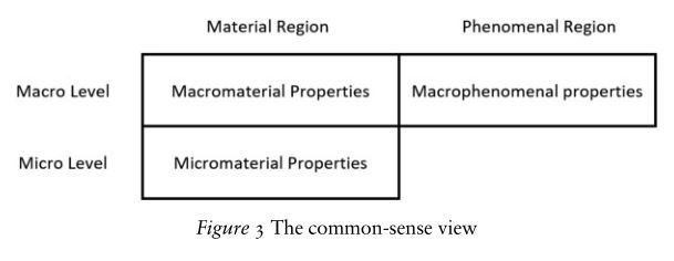 The common-sense view (surmounted by panpsychism)