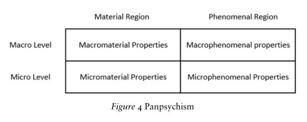 Panpsychism's view